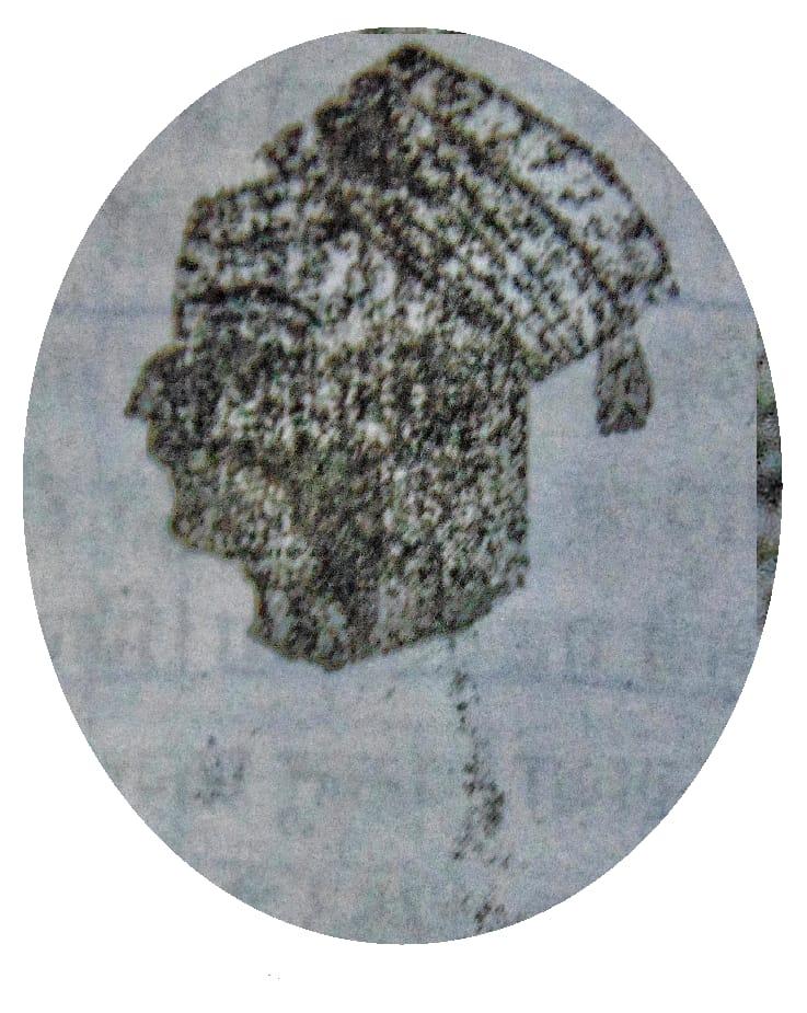 maharaja dwarkadas