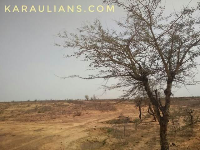 karauli_climate2
